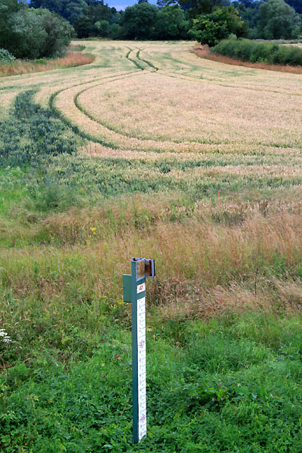 Field and depth gauge