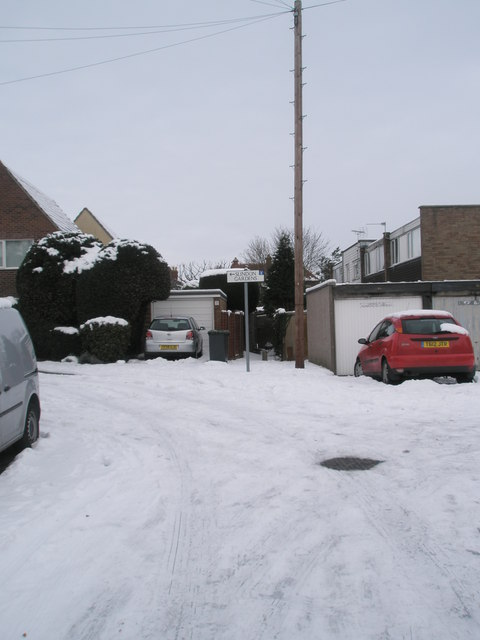 A snowy Juniper Square (6)
