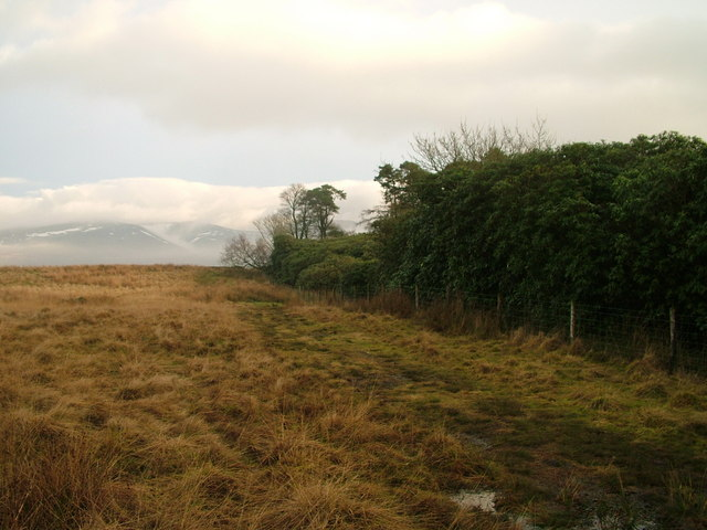 Footpath by Talebrigg Hill