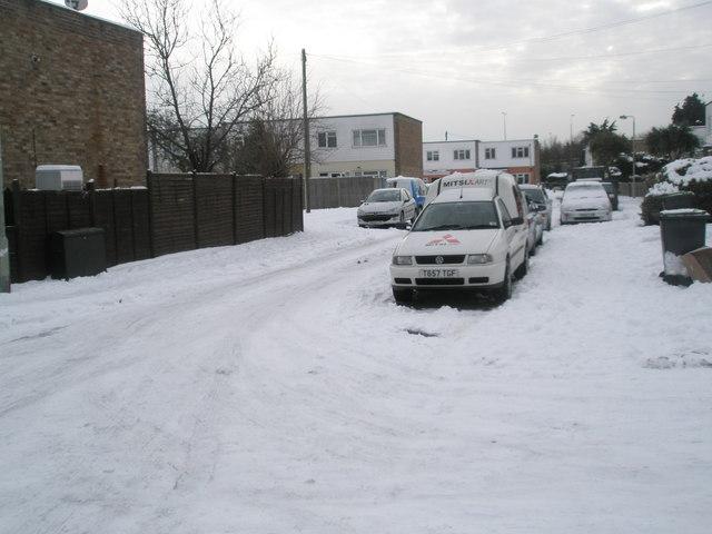A snowy Juniper Square (8)