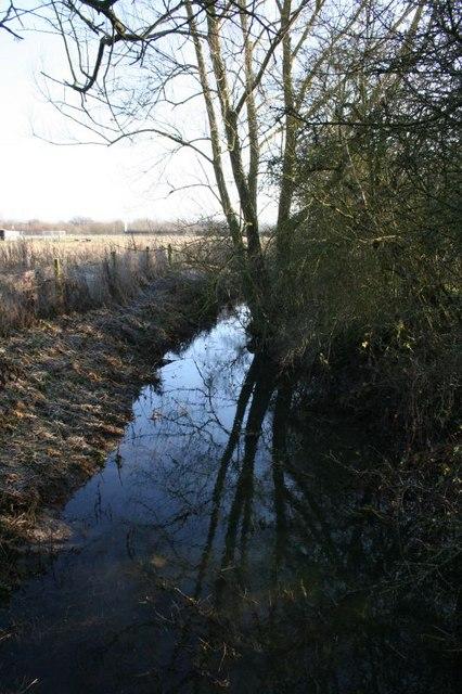 One side of Bradford's Brook