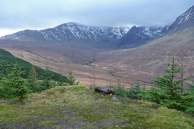Forest track in Glen Brittle