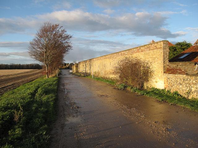 Track to Chippenham Fen