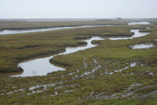 Saltmarsh near the River Ore