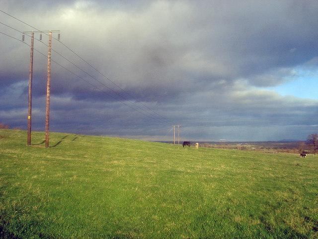 Power lines on Naunton Farm