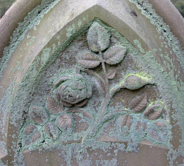 Lichened Tombstone, St. Peter's, Great Limber