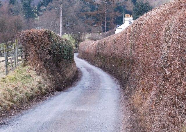 The lane to Rhewl