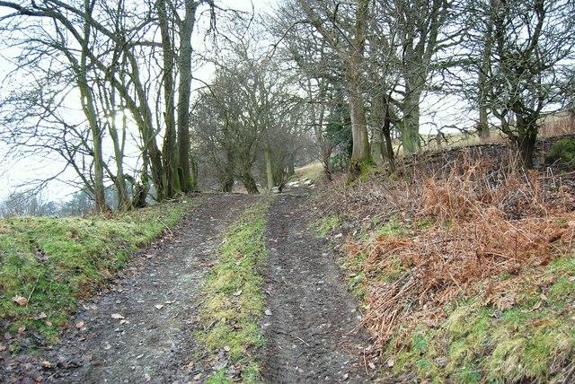 Footpath to Maen-y-goron-uchaf