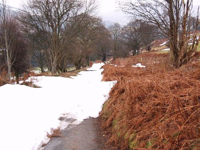The lane down to Rhewl