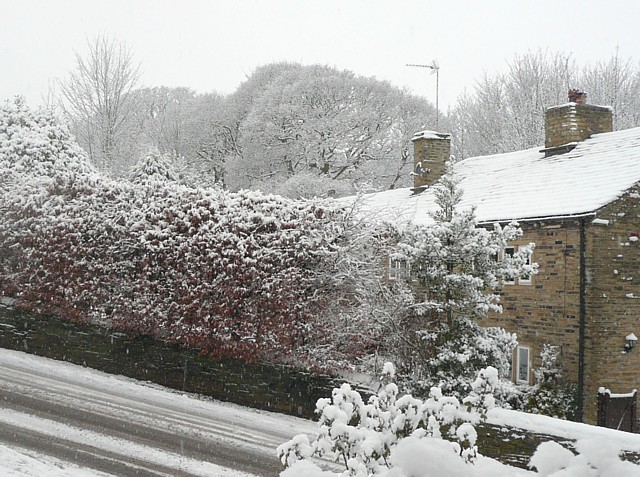 Snow scene, Delf Hill
