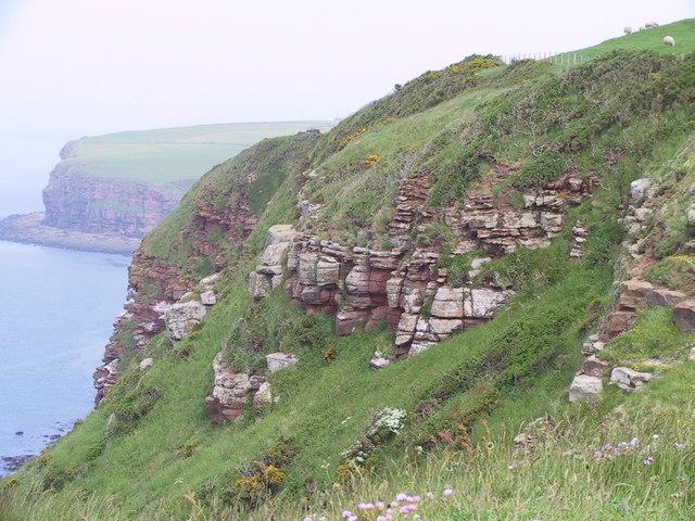 Cliffs, South Head