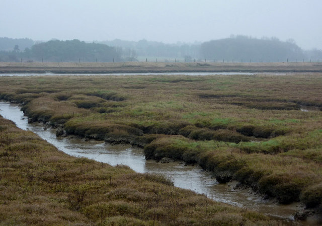 Saltmarsh by the River Ore