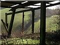 SX8564 : Barn on Brownscombe Hill : Week 3