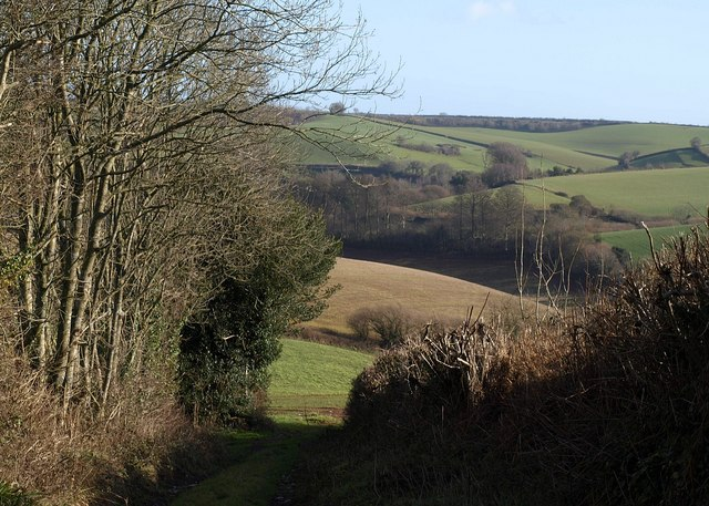 Track, Brownscombe Hill