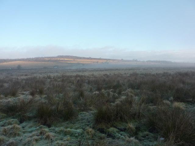 Looking north across Leash Fen