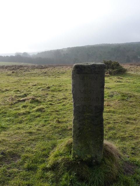 A modified (?) boundary stone