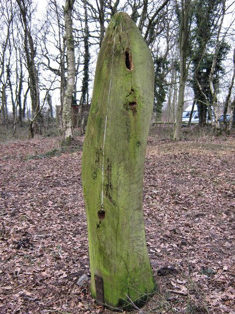 Woodpecker damage to sculpture (2)