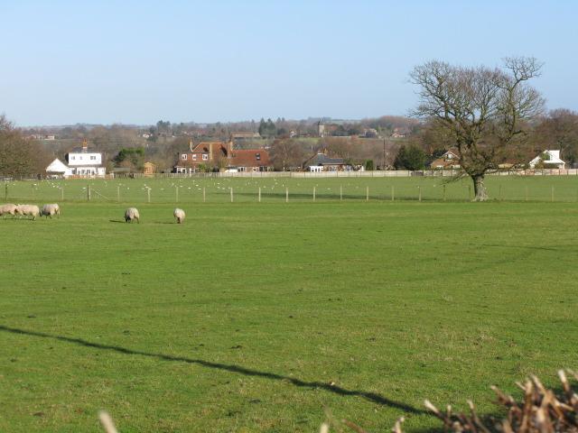 View towards Broad Oak