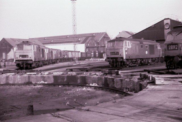Hymek class locomotives at Old Oak Common depot