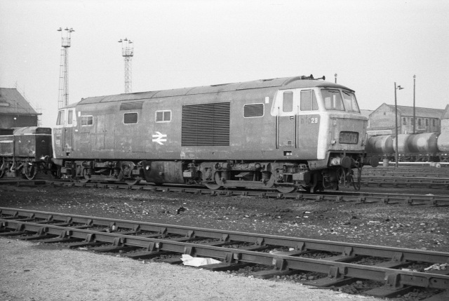 Hymek class number 7029 at Old Oak Common depot