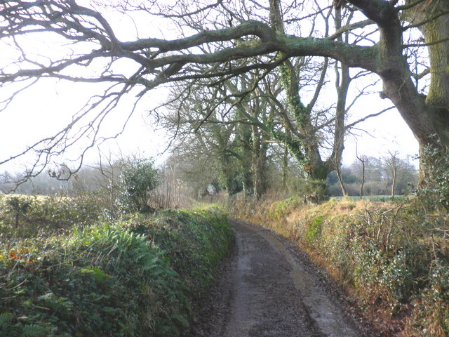 Narrow lane, above Silverton
