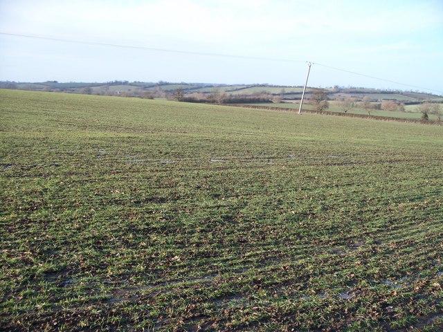 Farmland near Burmington