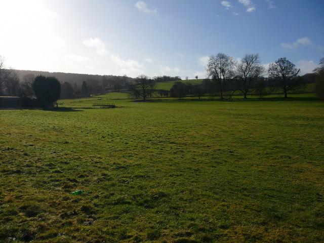Hurstbourne Tarrant - Field