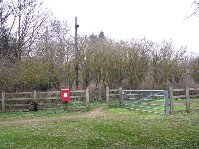 Path to the River Yare