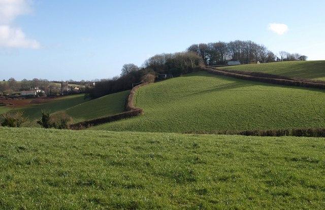 Fields near Marldon