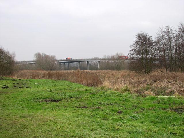 View across the eastern edge of Whitlingham Marsh