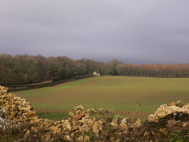 Field viewed through broken wall