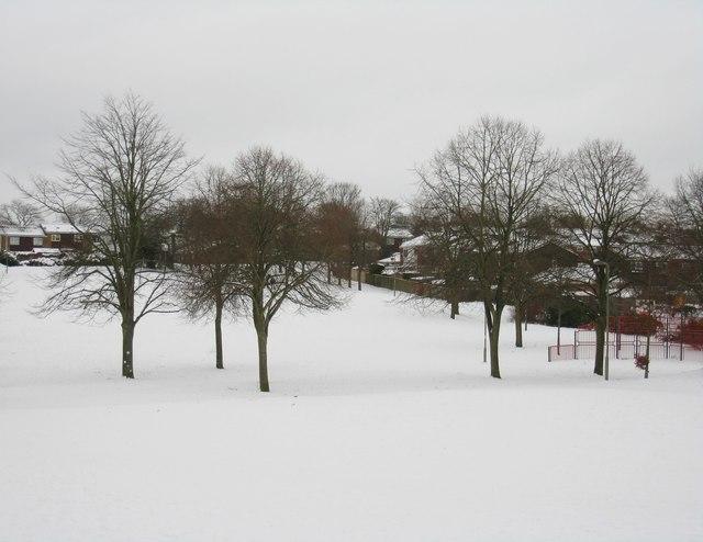 Brighton Hill Park