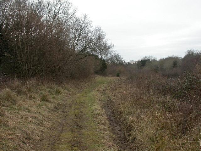 Martin Down, track