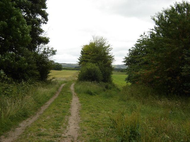 Farm  Track  toward  Potter  Brompton