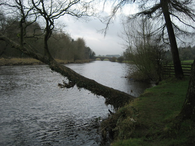 River Ribble downstream of Brungerley Bridge