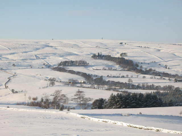 Snowy East Allen Dale north of High Studdon
