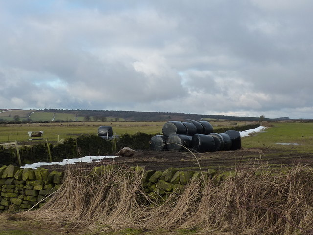 Farmland and silage bales