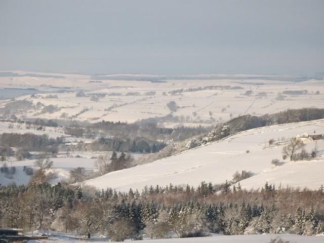Snowy East Allen Dale north of Studdon Park (2)