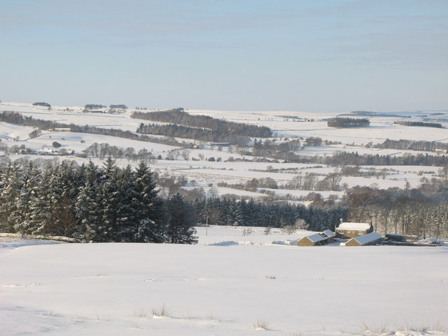 Snowy pastures and woodland around Studdon Park (2)