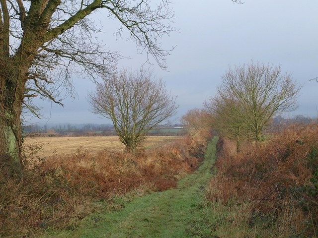 Footpath near Weekmoor