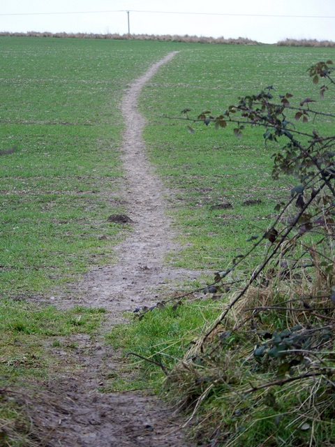 Footpath, Bishopstone