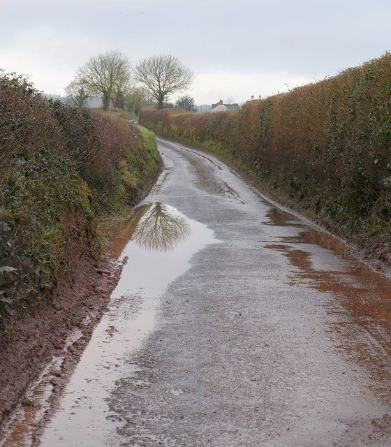Lane near Bickley