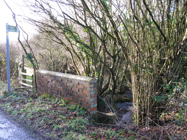 Footpath and small stream from Dicksons Bourne