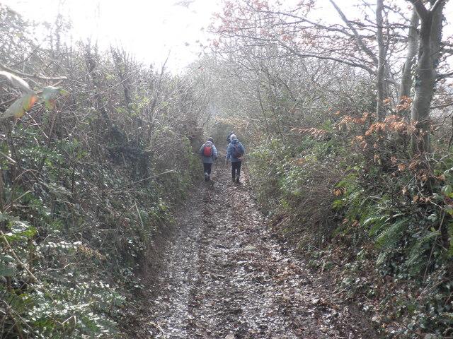 Muddy track, down to Greenslinch