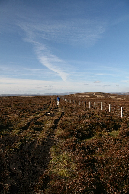 Fence line, St. Arnold's Seat