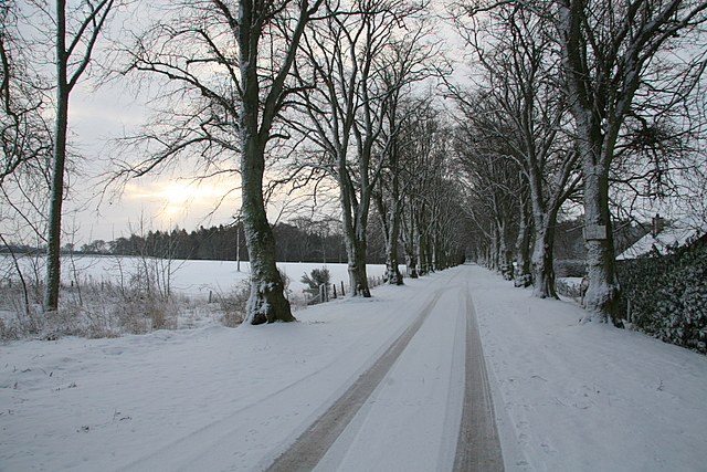 Driveway to Invereighty House