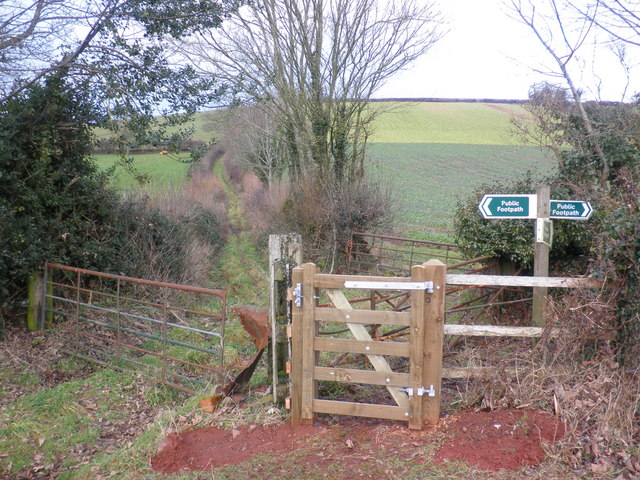 New gate, at footpath junction, near Livingshayes
