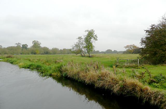 Pasture near Alrewas, Staffordshire