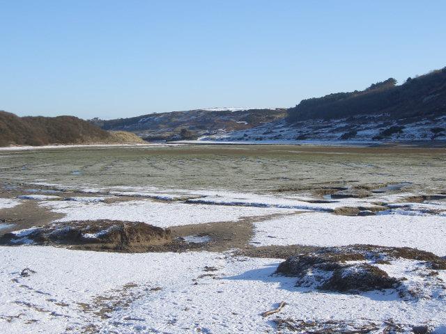 Salt marsh in the Ogmore estuary