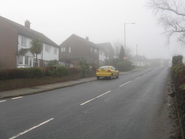 Dukinfield - Yewtree Lane